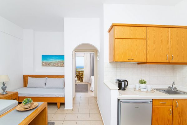 Luxury One Bedroom Apartments with Sea View Living room and Kitchenette