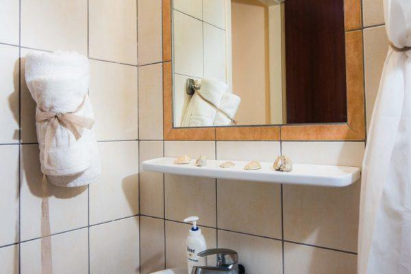 Standard Twin/Double Studio bathroom